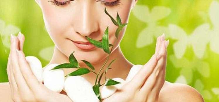 Bio power: dimentica creme untuose ed inefficaci, ora la beauty più innovativa è verde