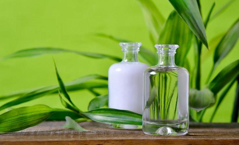 Cosmetici green: senza derivati di origine animale, efficaci ed ecocompatibili