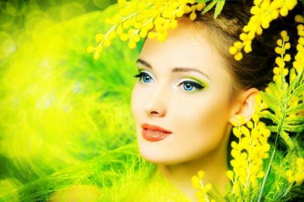 Mimosa: simbolo di un' usanza esclusivamente italiana